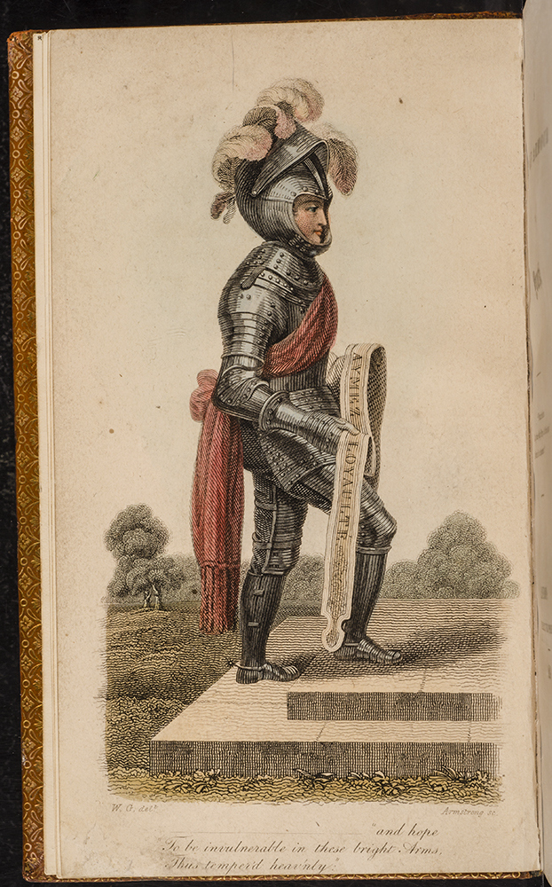 GRIMALDI, STACEY - Suit of Armour for Youth, A.