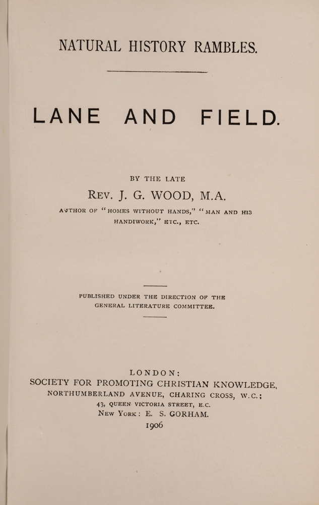 Natural History Rambles: Lane and Field. Rev. J. G. WOOD.