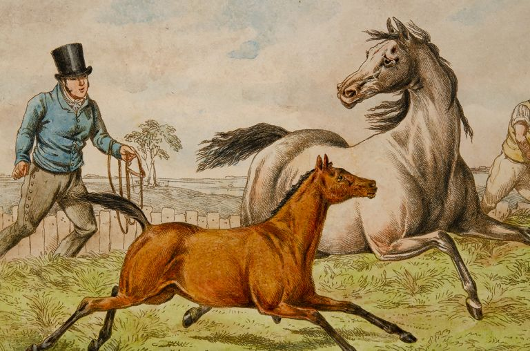 Seven Ages of the Horse, The. Henry ALKEN.