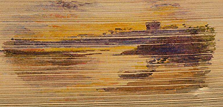 Homes and Haunts of Sir Walter Scott, Bart., The. FORE-EDGE PAINTING., Alfred DE SAUTY, binder, artist, George G. NAPIER, Sir Walter SCOTT.