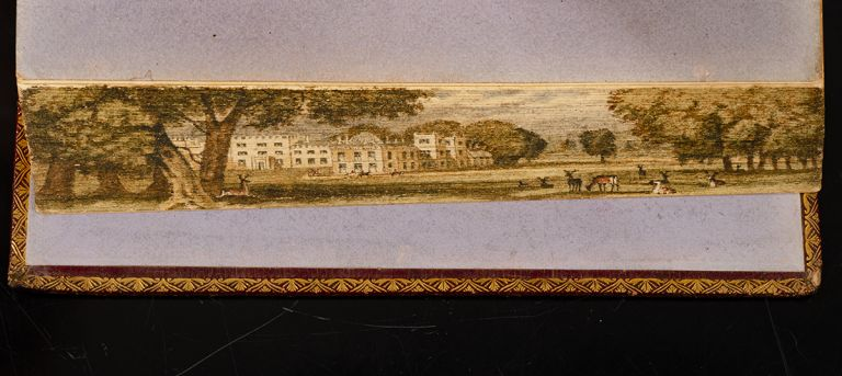 Essays in Rhyme on Morals and Manners. FORE-EDGE PAINTING, TAYLOR AND HESSEY, Jane TAYLOR.