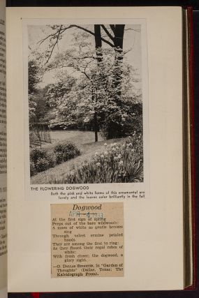 Poetical Works of George Meredith, The